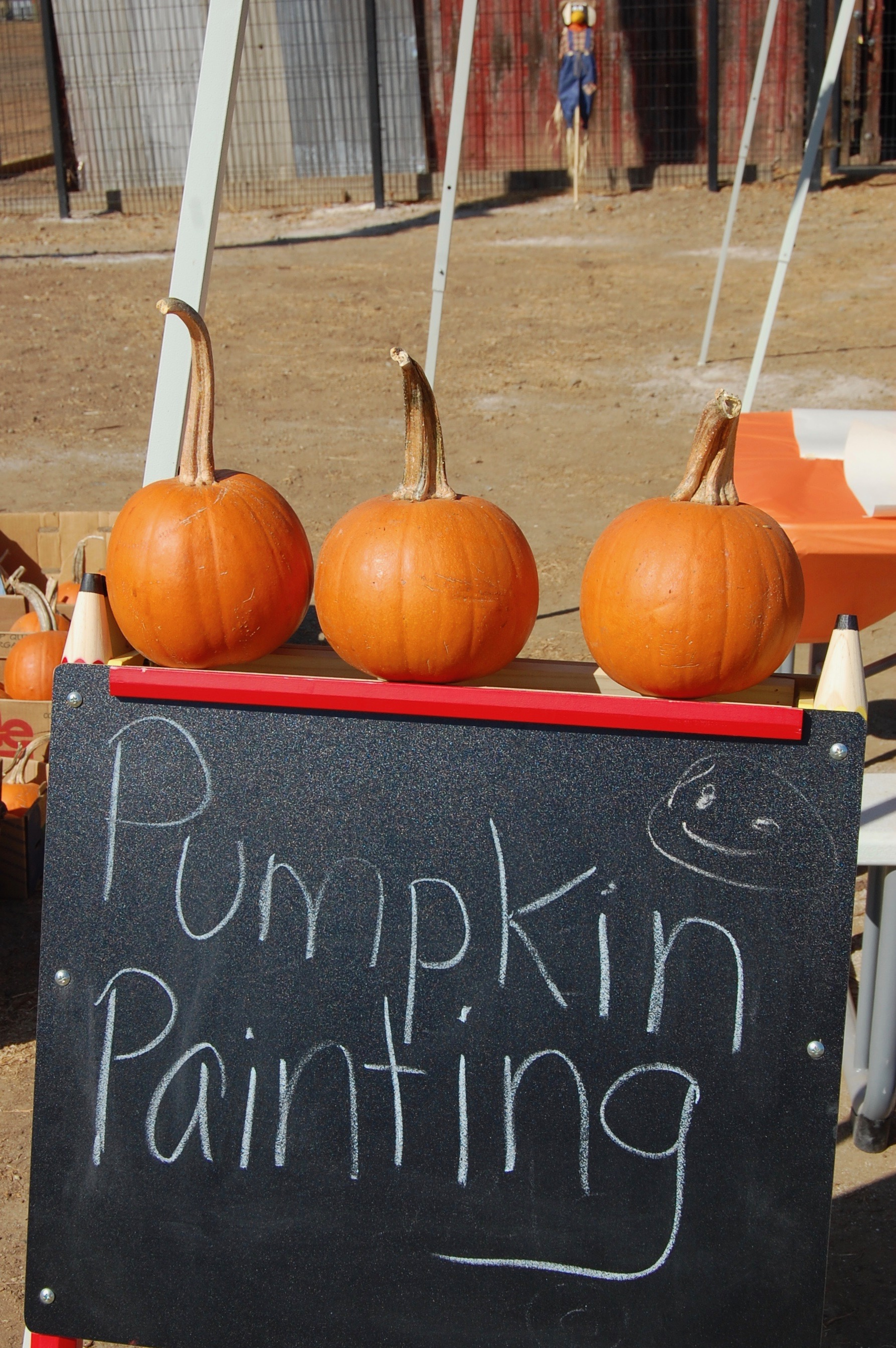 Pumpkin painting was another popular stop for all of the kids.