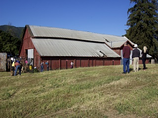 barn,roof,metal,people,grass,trees