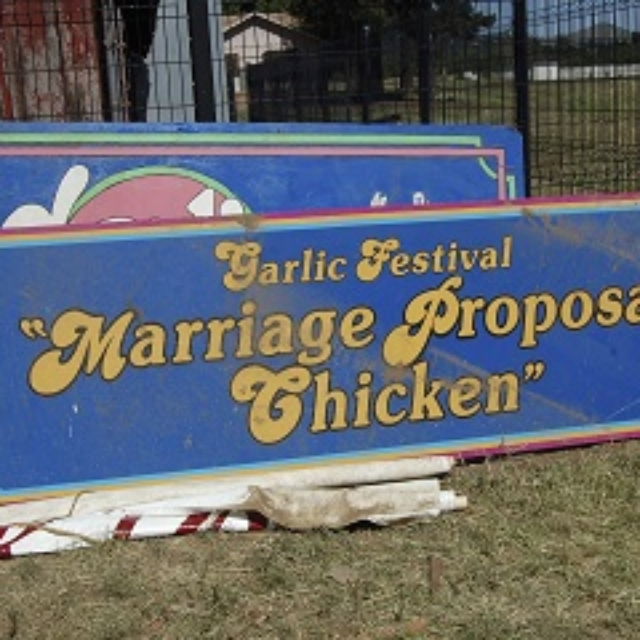sign,blue,chicken,garlic festival,marriage,propose